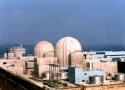 전국 원전지역 갑상선암 피해자, 한수원 상대 대규모 손배소
